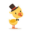 little yellow duck chick in top hat and bow tie vector image vector image