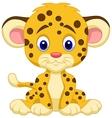 Baby leopard cartoon vector image