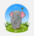 cartoon baby elephant in the grass vector image vector image