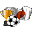 football ball with cup and japan flag vector image