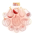 Graphic collection of pumpkins vector image