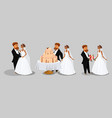 groom and bride collection vector image