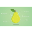 pear nutrition with list of vector image vector image