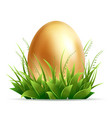 realistic golden egg and green grass isolated vector image vector image