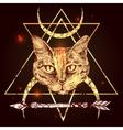 portrait of cat vector image