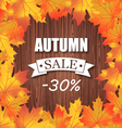 Autumn sale discount banner vector image
