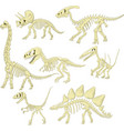 cartoon dinosaurs skeleton collection set vector image