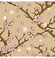 cherry or sakura seamless pattern background vector image vector image