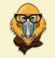 cool wild animal cartoon vector image vector image