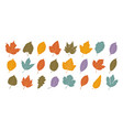 decorative leaves set autumn leaf fall concept vector image