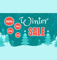 final winter sale banner flat style vector image