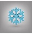 Icon weather Snowflake vector image vector image