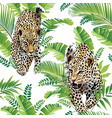 leopards palm leaves tropical watercolor seamless vector image vector image