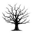 oak tree silhouette isolated vector image vector image