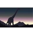 Silhouette of single brachiosaurus in hills vector image vector image