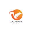 squirrel logo and symbols vector image vector image