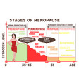 stages and symptoms of menopause vector image vector image