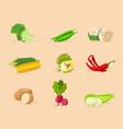 vegetables flat set vector image vector image
