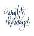 winter holidays - hand lettering inscription text vector image