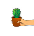 hand with cactus pop art vector image vector image