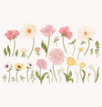 set with garden flowers vector image