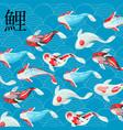 carp koi traditional sacred japanese fish with vector image vector image