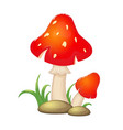 cartoon red mushrooms with stounes and grass vector image vector image
