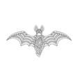 contour bat vector image vector image