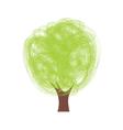 drvo sarano2 vector image vector image