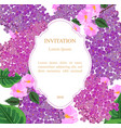 lilac flowers invitation card vector image