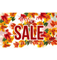 stylish banner with autumnal sale vector image vector image