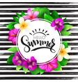 summer hand lettering - hello summer vector image