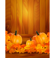 background with three pumpkins vector image