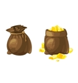set two bags with gold vector image vector image