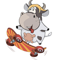 A small cow on a skateboard Cartoon vector image vector image