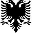 black albanian eagle vector image