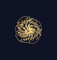 celebration event or festival firework vector image vector image