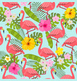 set of tropical flowers of leaves and birds vector image vector image