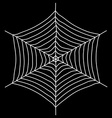 Spyder web Isolated on a black background vector image vector image