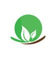 circle leaf ecology logo image vector image vector image