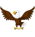 cute eagle cartoon vector image vector image