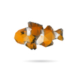 Fish abstract isolated on a white backgrounds vector image vector image