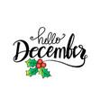 hello december lettering vector image
