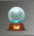 isolated magic or crystal ball on transparent vector image