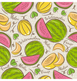 Pattern with melon and watermelon vector image vector image