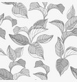 seamless monochrome pattern with forest leafs vector image vector image
