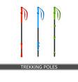 trekking poles vector image vector image