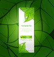 vertical paper strip with green leaves and drops o vector image vector image