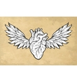 Anatomical heart with wings symbol vector image vector image