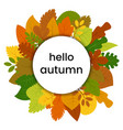 Autumn leaves in circle with inscription hello